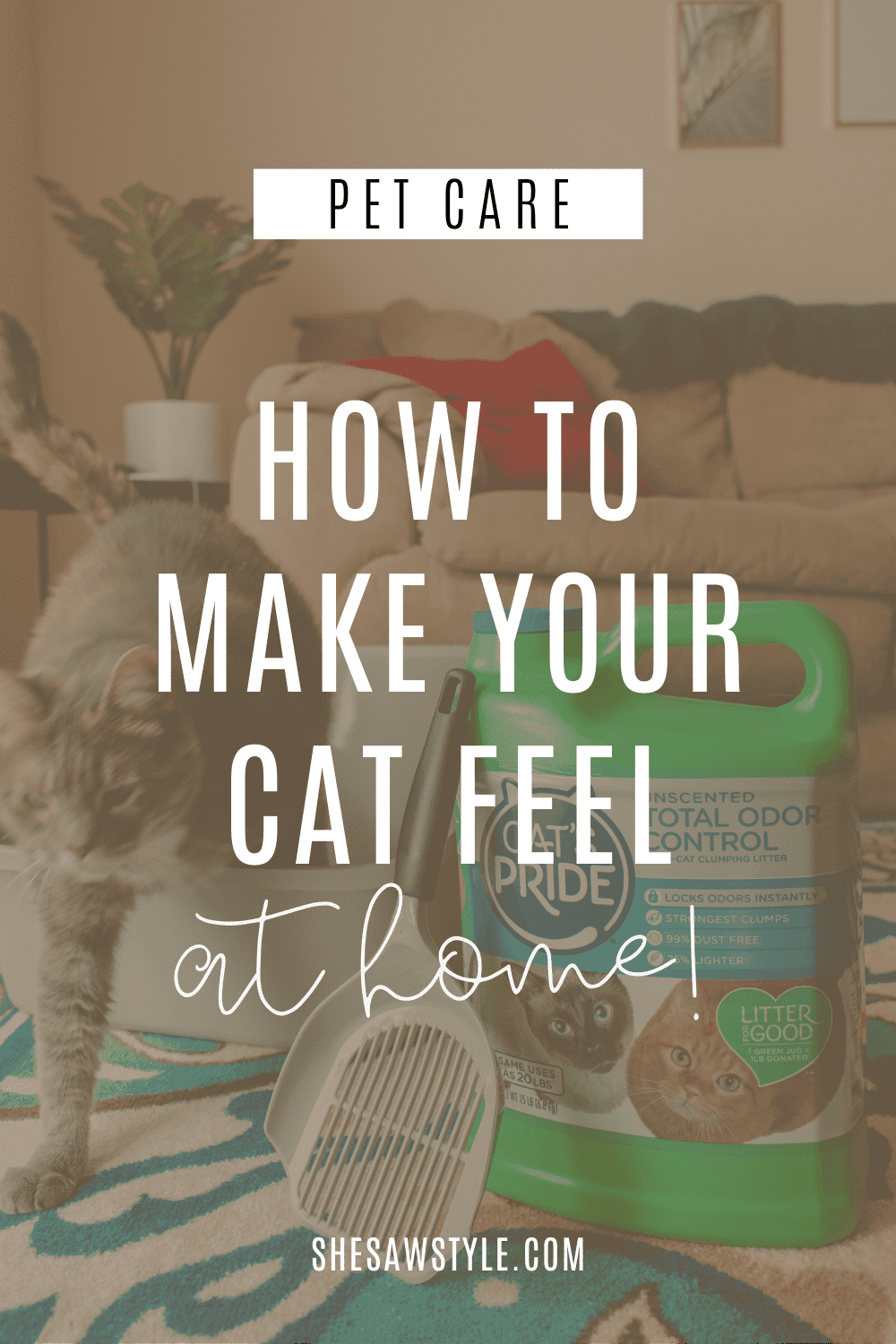 How to Make Your Cat Feel At Home | She Saw Style