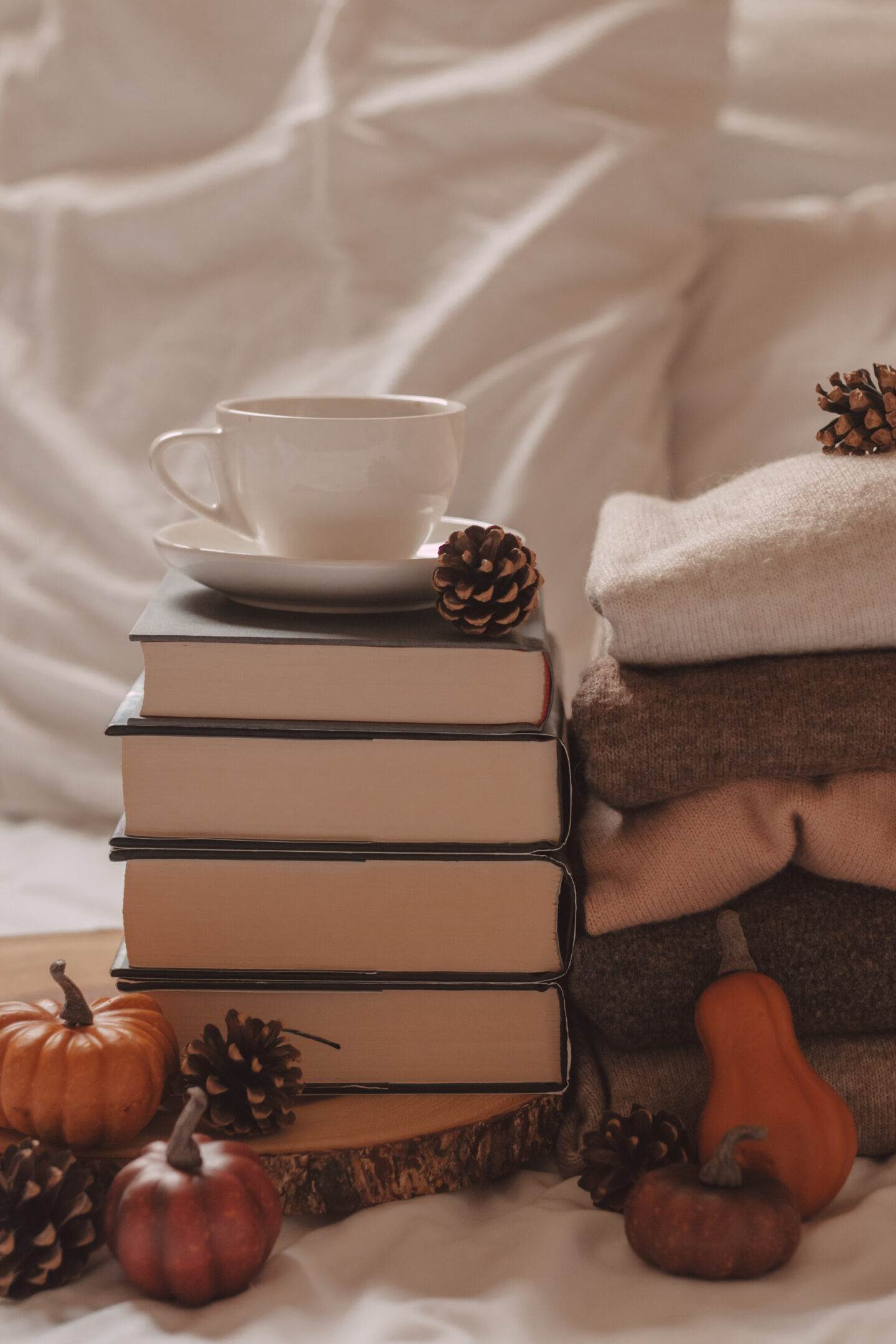 The Best of Cozy Books for Fall | She Saw Style